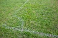 Turf soccer field green grass and white lines. Stock Photos