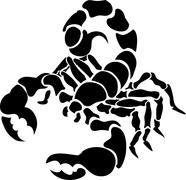 Scorpion illustration Stock Illustration