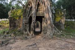 Angkor, Siem Reap, Cambodia, Indochina, Southeast Asia, Asia - stock photo
