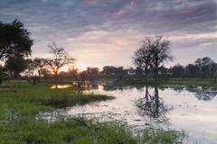 Okavango Delta, Botswana, Africa - stock photo