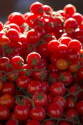 Cherry tomatoes for sale in market in Alberobello, Puglia, Italy, Europe - stock photo