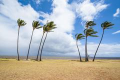 Kakahaia Beach Park, island of Molokai, Hawaii, United States of America Stock Photos