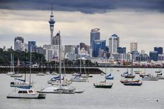 Auckland, North Island, New Zealand - stock photo