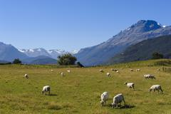 Rees Valley near Queenstown, Otago, South Island, New Zealand - stock photo