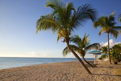 Stock Photo of Antigua, Leeward Islands, West Indies, Caribbean, Central America
