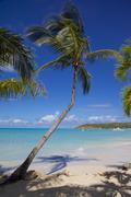Stock Photo of St. Georges, Antigua, Leeward Islands, West Indies, Caribbean, Central America