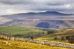 Yorkshire Dales, Yorkshire, England, United Kingdom - stock photo