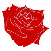Red Rose on White Stock Illustration