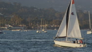 Sailboats in California 4K Stock Video Footage Stock Footage