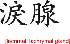 Chinese Sign for lacrimal, lachrymal gland - stock illustration