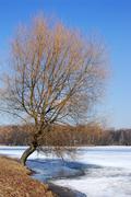 Spring on the lake. - stock photo