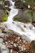 frothy mountain stream moss - stock photo