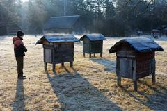 Country apiary in early spring - stock photo