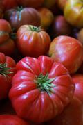 Heritage tomato Stock Photos