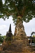 Wat Mae Nang Pleum - stock photo