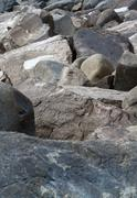 Breaker boulders close up Stock Photos