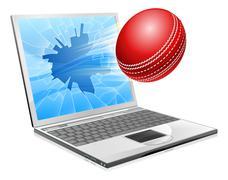 Cricket laptop broken screen concept Stock Illustration