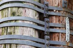 Bound utility poles Stock Photos
