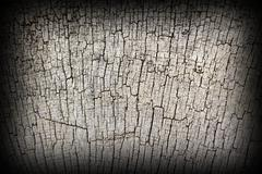 antique  oak wood texture on exterior of very old church - stock photo