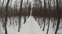 Snowbound alley in park at winter day. Aerial view Stock Footage