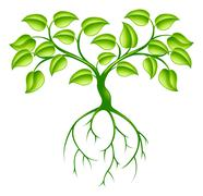Green tree and roots - stock illustration