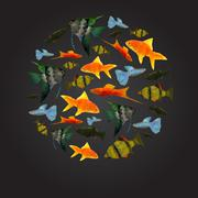 Colorful aquarium fishes isolated polygonal vector illustration Stock Illustration