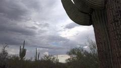 4K Time Lapse Slider Tucson Arizona Desert Storm Cloud Landscape Stock Footage