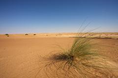Desert in Mauritania Stock Photos