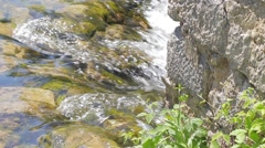 MREZ 36 Beautiful sparkling fresh river water flowing over green rocks stone wal Stock Footage