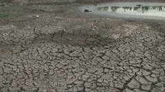 Cracked ground from drought Stock Footage