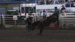 Saddle Bronc horse cowboy rodeo ride 4K 287 Stock Footage