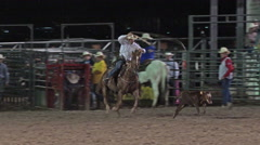 Steer roping cowboy horse rodeo night 4K 299 Stock Footage
