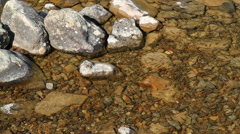 Lots of small fish in lake Stock Footage