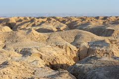 Arava desert in the first rays of the sun Stock Photos