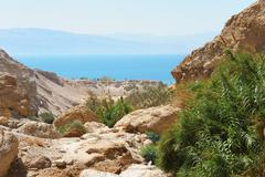 Ein Gedi Nature Reserve off the coast of the Dead Sea Stock Photos
