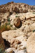 Ein Gedi Nature Reserve off the coast of the Dead Sea - stock photo