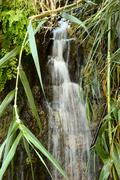 one of the waterfalls in Ein Gedi Nature Reserve - stock photo