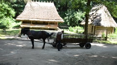 Vehicle with horses. Stock Footage
