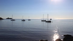 Sailboats and yachts anchored next the coast - stock footage