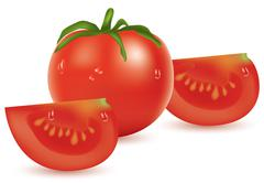 vector tomato and slices - stock illustration
