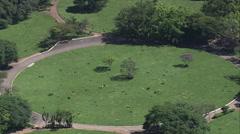 Aerial Brazil- Cemiterio do Morumbi - Ayrton Senna's grave, So Paulo, Stock Footage