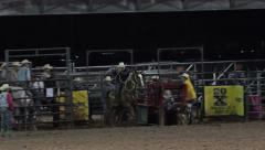 Rodeo cowboy chute steer roping missed 4K 296 Stock Footage
