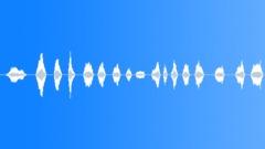Jalousie Slide - sound effect