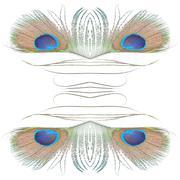 green peacock feathers - stock illustration