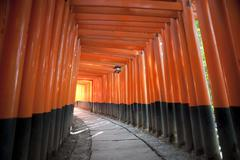 tunnel of red torii gates - stock photo