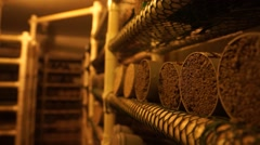 Closeup of Material Testing Lab Storage Area Stock Footage