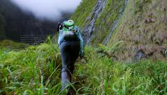 Glidecam behind hikers in Kauai Hawaii - stock footage