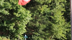 USA Flag Waving with Forest Background Stock Footage