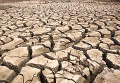 Drought breaks ground fissures Stock Photos
