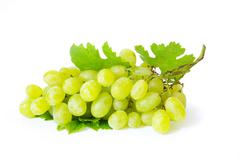 Grape with green leaves isolated on white background Stock Photos